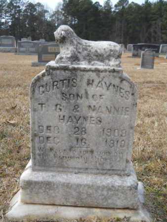 HAYNES, CURTIS - Webster County, Louisiana | CURTIS HAYNES - Louisiana Gravestone Photos