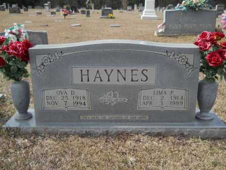 PAYNE HAYNES, LIMA - Webster County, Louisiana | LIMA PAYNE HAYNES - Louisiana Gravestone Photos
