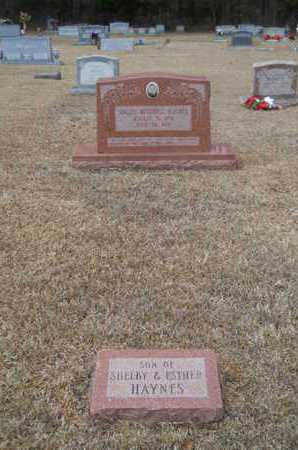 HAYNES, SOLLEY MITCHELL (OVERVIEW) - Webster County, Louisiana | SOLLEY MITCHELL (OVERVIEW) HAYNES - Louisiana Gravestone Photos