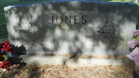 JONES, LEE FULTON, SR - Webster County, Louisiana   LEE FULTON, SR JONES - Louisiana Gravestone Photos