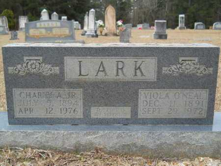 LARK, VIOLA - Webster County, Louisiana | VIOLA LARK - Louisiana Gravestone Photos