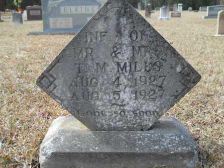 MILLS, INFANT - Webster County, Louisiana | INFANT MILLS - Louisiana Gravestone Photos