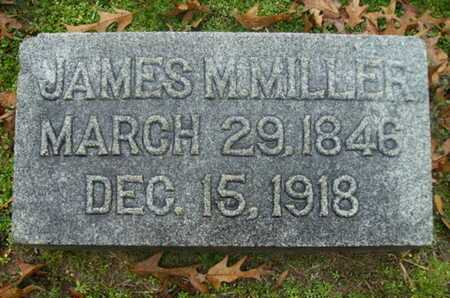 MILLER, JAMES MADISON - Webster County, Louisiana | JAMES MADISON MILLER - Louisiana Gravestone Photos