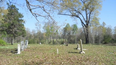 *OVERVIEW, TAYLOR ACADEMY CEMETERY - Webster County, Louisiana | TAYLOR ACADEMY CEMETERY *OVERVIEW - Louisiana Gravestone Photos