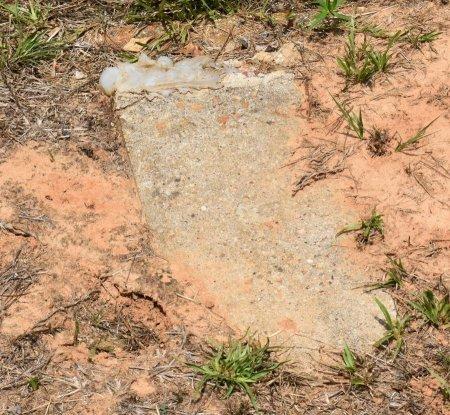 UNKNOWN, 11 - Webster County, Louisiana   11 UNKNOWN - Louisiana Gravestone Photos