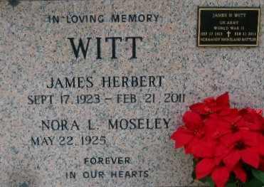 WITT, JAMES HERBERT - West Baton Rouge County, Louisiana | JAMES HERBERT WITT - Louisiana Gravestone Photos