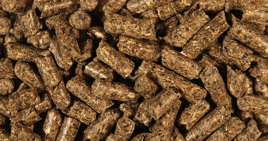 Soybean meal pellets/non pelletized