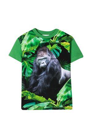 T-shirt con stampa Molo MOLO | 8 | 1S21A2297430