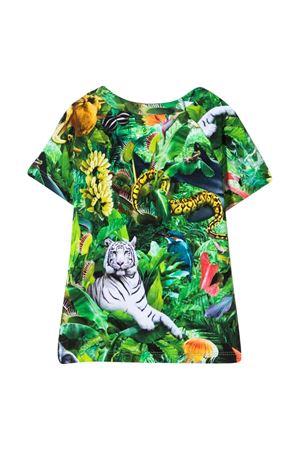 Multicolor print t-shirt Molo MOLO | 8 | 3S21A2036242