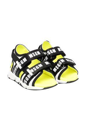 Sandali gialli e neri con logo Msgm kids MSGM KIDS | 12 | 67210VAR3