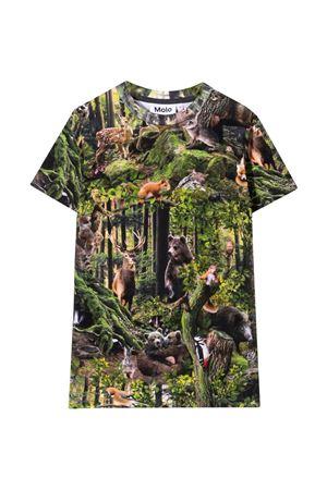 T-shirt stampa jungle bambino MOLO   8   1W21A2136345