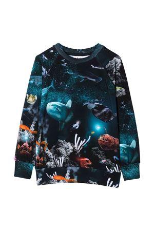 T-shirt blu teen MOLO   8   1W21A4156342T