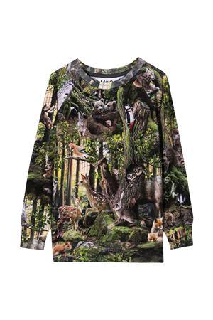 T-shirt verde bambinoì MOLO   8   1W21A4156345