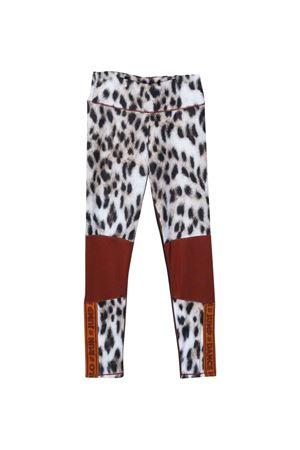 Leggings teen con stampa leopardata MOLO | 411469946 | 2W21F2036403T
