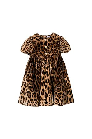 Dolce and Gabbana kids animalier dress  Dolce & Gabbana kids | 11 | L51DS5FSWBHHY13M
