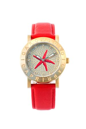Starfish watch L