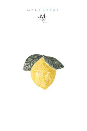 Capri lemon magnet Manè Capri | 20000005 | LIMONE CALAMITAGIALLO