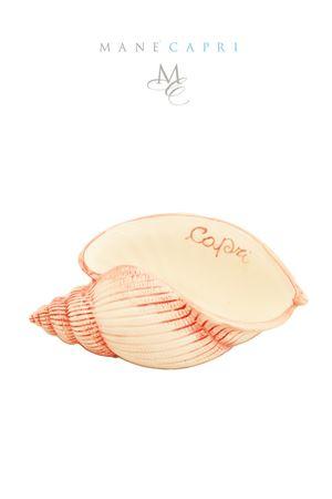 Ceramic shell Sea Gull Capri Sea Gull Capri | 20000025 | CONC CAPRICM 23X12