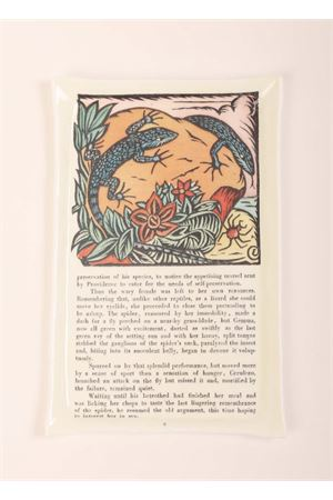 Vassoio con Lucertole azzurre e storia Eco Capri | 20000025 | WL2315BKSTRBOOK PAGE
