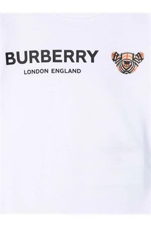 BURBERRY | 517 | 8043076BA1464