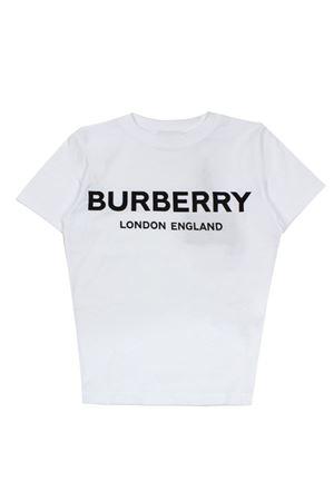 BURBERRY   24   8009235KA1464