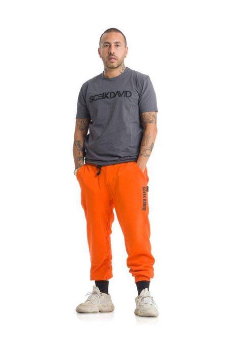 T-SHIRT SCEIKDAVID SCEIKDAVID | T-shirt | TU01BISGRIGIO