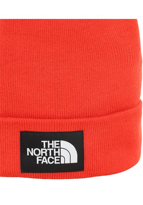 cappello the north face THE NORTH FACE | Cappello | 3FNTWU5