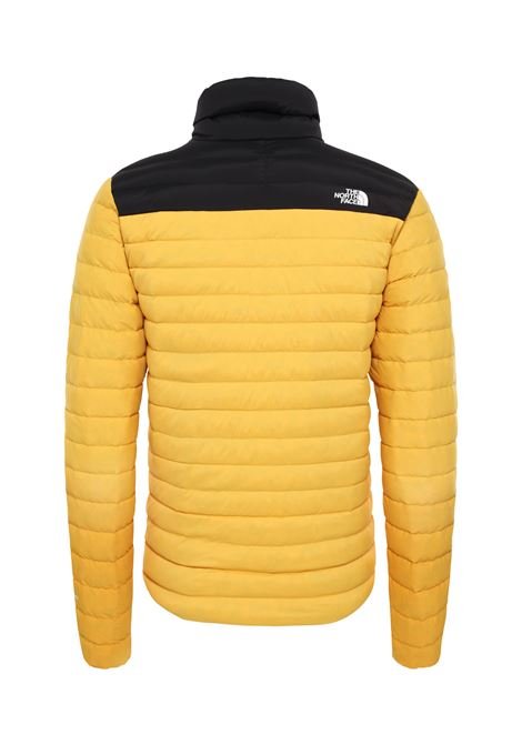 piumino the north face THE NORTH FACE | Piumino | 3Y56LR0