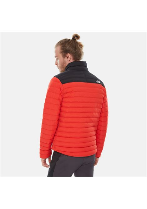 piumino the north face THE NORTH FACE | Piumino | 3Y56WU5