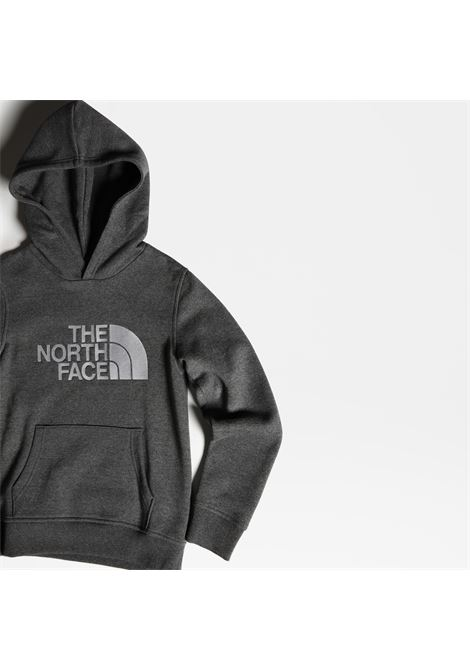 FELPA THE NORTH FACE THE NORTH FACE | Felpa | A33H4DYY1