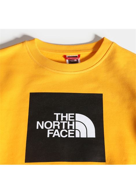 FELPA THE NORTH FACE THE NORTH FACE | Felpa | A37FY56P1