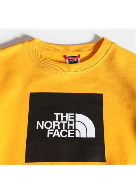 FELPA THE NORTH FACE THE NORTH FACE | Felpa | A37FY56P1
