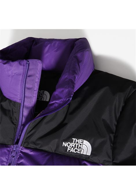 GIUBBINO THE NORTH FACE THE NORTH FACE | Giubbino | A4SVKS961