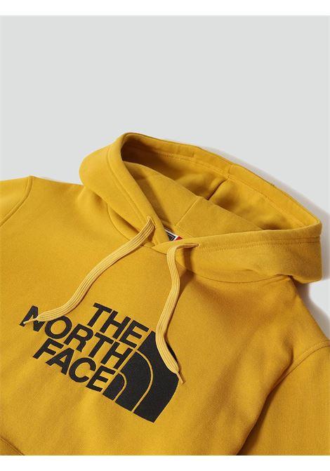 FELPA UOMO THE NORTH FACE | Felpa | AHJYH9D