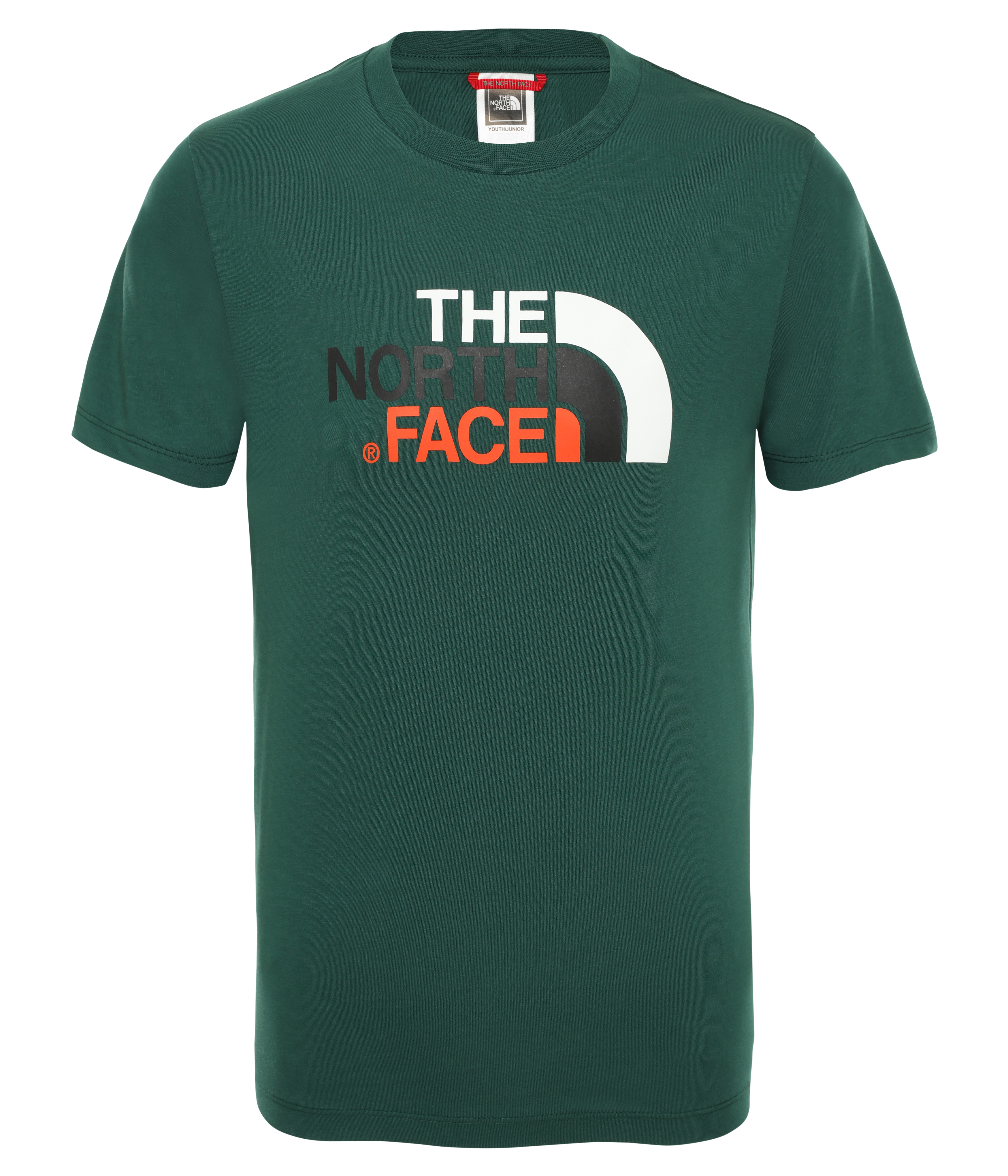 t-shirt m/m the noth face THE NORTH FACE | T-shirt m/m | A3P7N3P