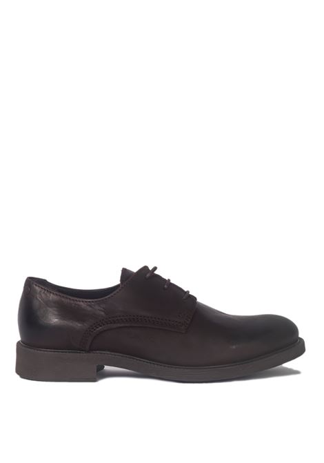 Jack & Jones Oxford JACK & JONES | Francesina | 12140785MARRONE