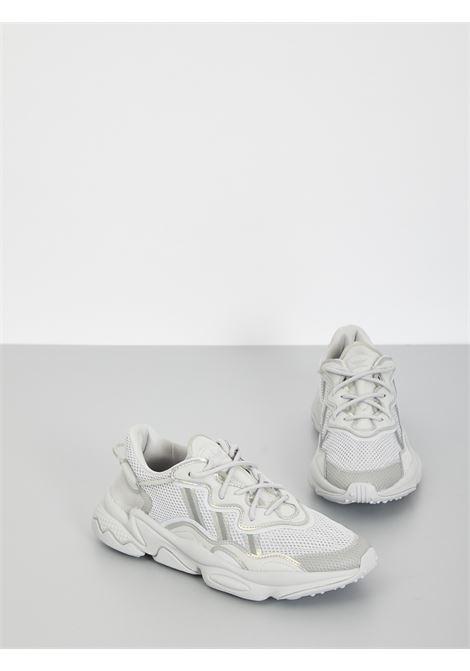 ozweego ADIDAS | Sneakers | FV9656GRIGIO