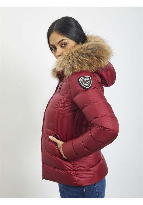 BLAUER | Quilted Jacket | 20WBLDC03084 568BORDEAUX
