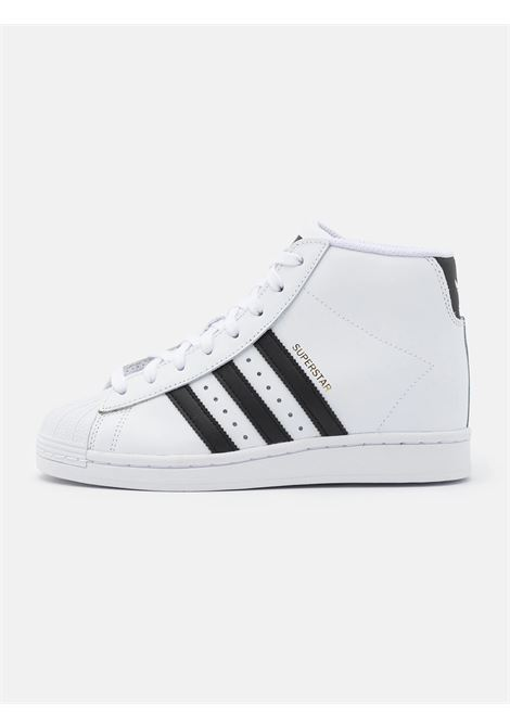 superstar up w ADIDAS | Sneakers | FW0118BIANCO