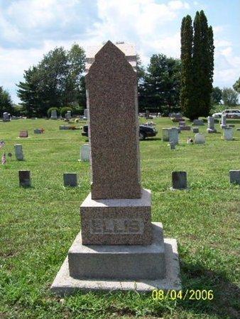 ELLIS, FAMILY MARKER - Barry County, Michigan | FAMILY MARKER ELLIS - Michigan Gravestone Photos