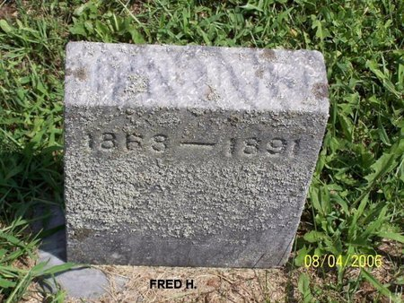 ELLIS, FREDERICK H. - Barry County, Michigan | FREDERICK H. ELLIS - Michigan Gravestone Photos