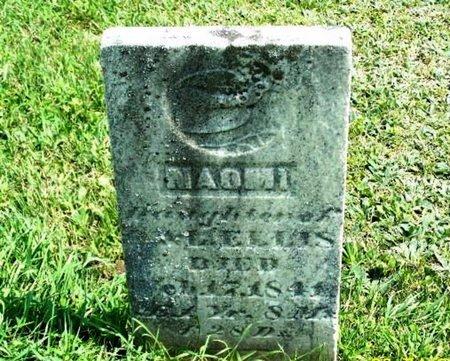 ELLIS, NAOMI - Barry County, Michigan   NAOMI ELLIS - Michigan Gravestone Photos