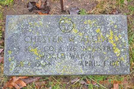 ALLEN, CHESTER W. - Branch County, Michigan | CHESTER W. ALLEN - Michigan Gravestone Photos