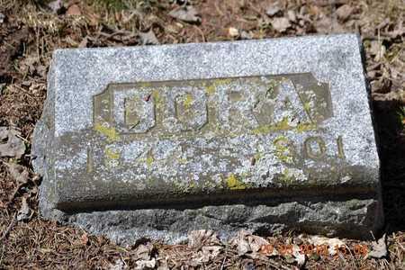 ALLEN, DORA - Branch County, Michigan | DORA ALLEN - Michigan Gravestone Photos