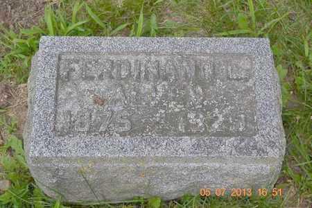ALLEN, FERDINAND L. - Branch County, Michigan | FERDINAND L. ALLEN - Michigan Gravestone Photos