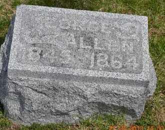 ALLEN, GEORGE - Branch County, Michigan | GEORGE ALLEN - Michigan Gravestone Photos