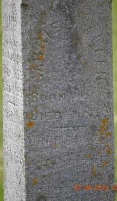 ALLEN, JOHN B.(CLOSEUP) - Branch County, Michigan | JOHN B.(CLOSEUP) ALLEN - Michigan Gravestone Photos
