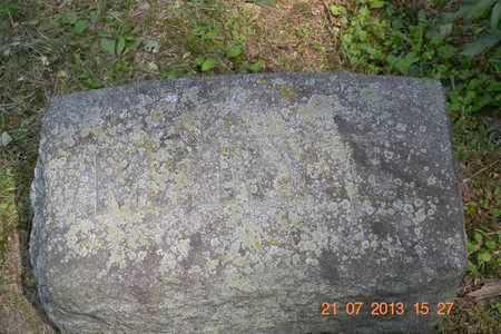 ALLEN, MARY E. - Branch County, Michigan | MARY E. ALLEN - Michigan Gravestone Photos