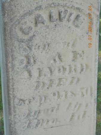 ALVORD, CALVIN - Branch County, Michigan | CALVIN ALVORD - Michigan Gravestone Photos