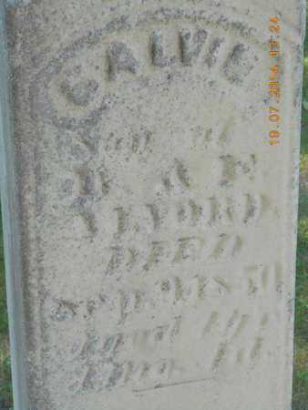 ALVORD, CALVIN - Branch County, Michigan | CALVIN ALVORD - Michigan Gravestone Photos